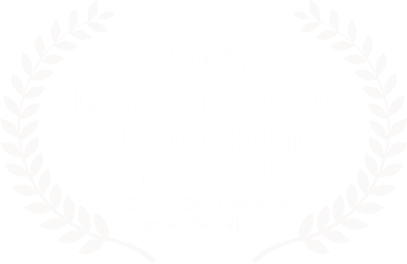 Matsalu Nature Film Festival - Winner Laurel
